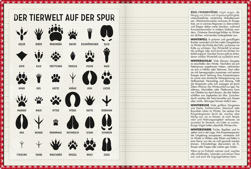 infografik tierspuren f r lily lux notizbuch iris. Black Bedroom Furniture Sets. Home Design Ideas