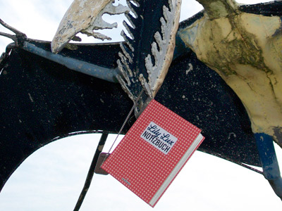 Foto vom Lily Lux Notizbuch am Saurier für die Geocaching-Aktion Reisendes Notizbuch